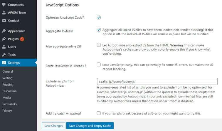 Autoptimize plugin advanced setting